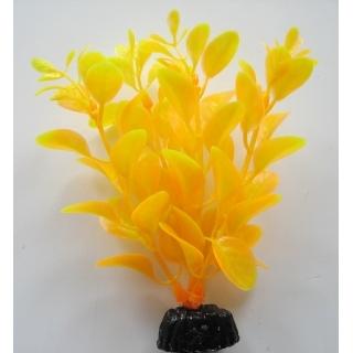 Людвигия ярко-желтая 10 см