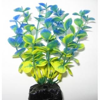 Бакопа синяя 10 см