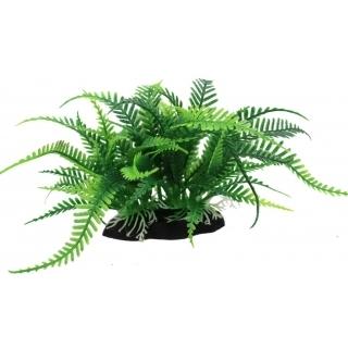 Аквариумное растение 15см