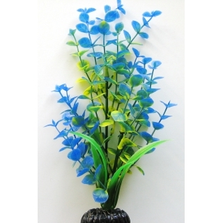 Бакопа синяя 30 см