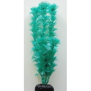Кабомба зелёная 50 см