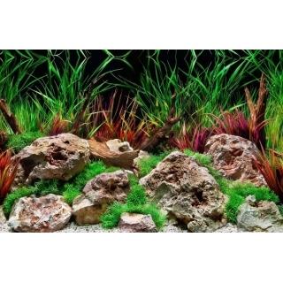 Фон для аквариума двусторонний, высота 45 см