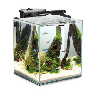 Аквариум Aquael Shrimp Set Duo 35