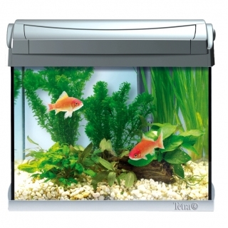 Tetra AquaArt LED Goldfish аквариум на 20 литров