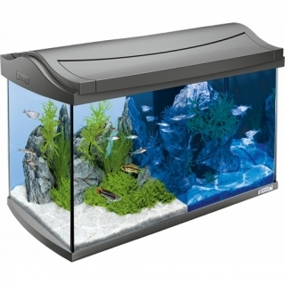 Tetra AguaArt LED Aquarium аквариум на 60 литров